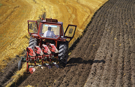The carbon content of arable soil depends very much on how farming is conducted. Photo: Jan Håkan Dahlström/ Bildhuset/ IT.